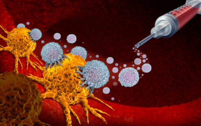 What's New in Pancreatic Cancer Research?